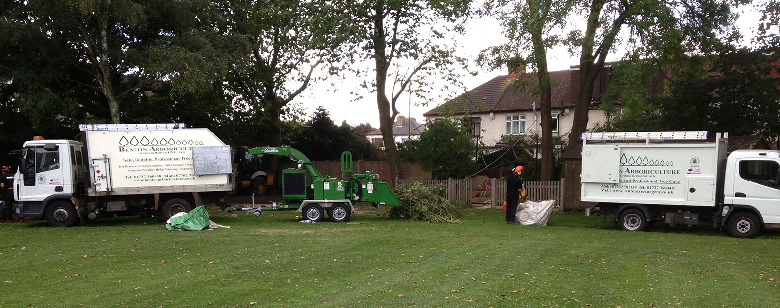 Tree Pruning Services by Benton Arboriculture