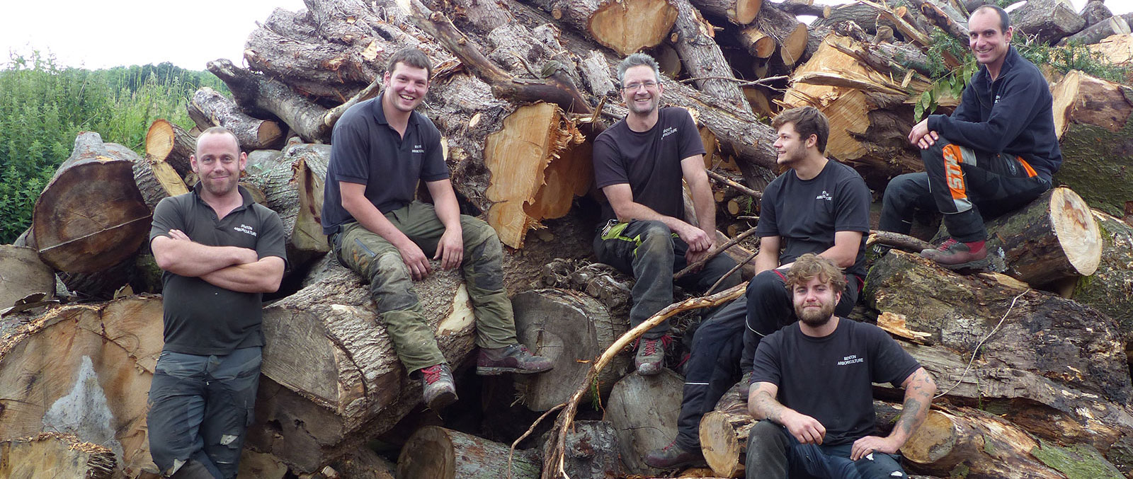 Find a Tree Surgeon in Surrey