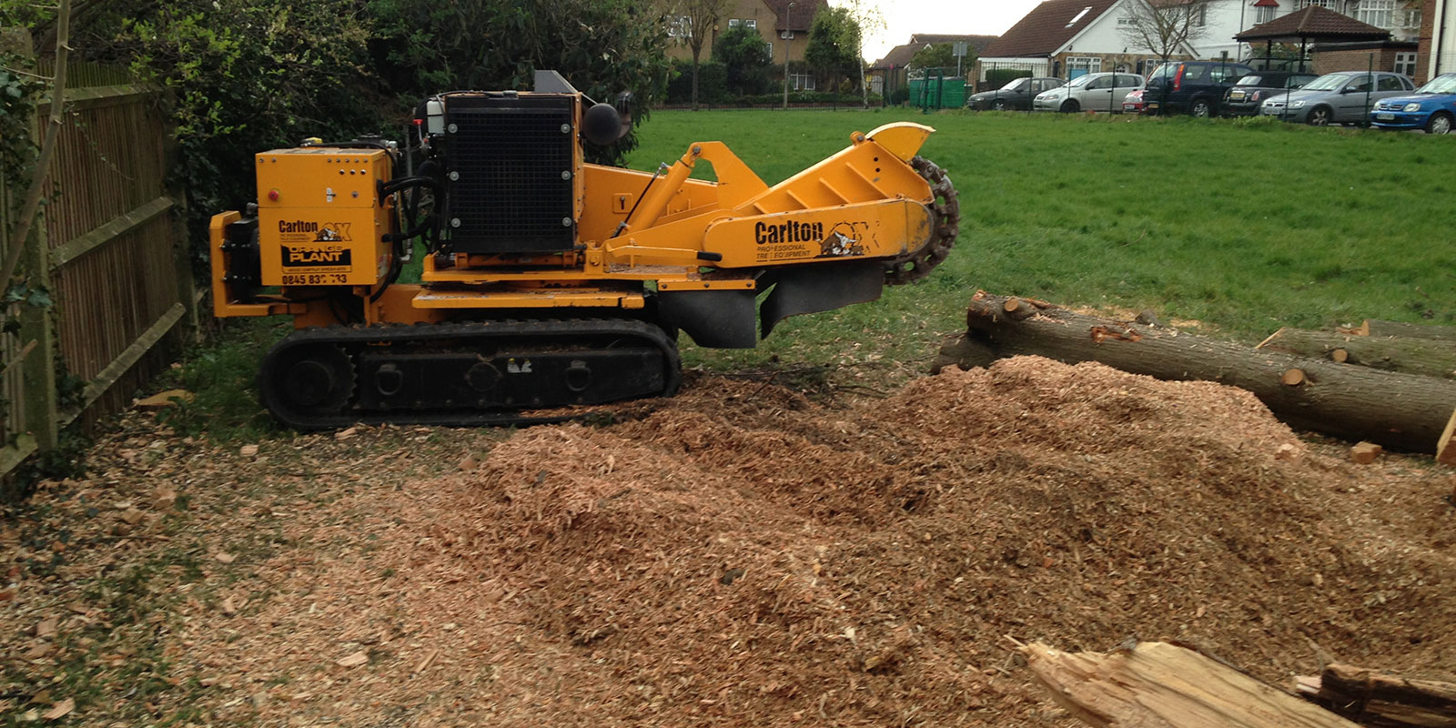 Stump Grinding Experts in Esher Surrey
